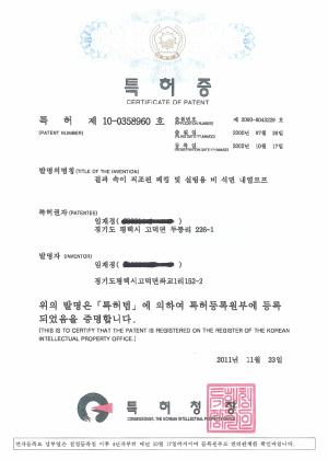 특허증 제10-0358960호